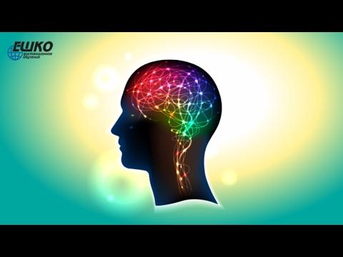 Практическая психология. Бихевиоризм – наука о поведении