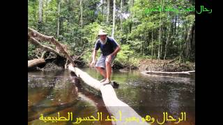 preview picture of video 'HD-رحلة في أعماق الامازون مع رحال الخبرDepths Amazon trip Rahal Alkhobar'