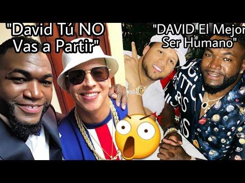 Daddy Yankee pide Justicia por David Ortiz (El Alfa, Lapiz, El Mayor, ToxiCrow, Cheddy piden PAZ)