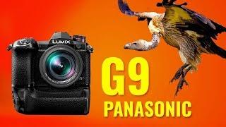 ПРЕЗЕНТАЦИЯ PANASONIC G9: ЛУЧШАЯ ФОТОБЕЗЗЕРКАЛКА?