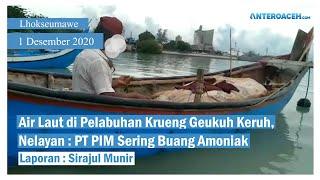 VIDEO Air Laut di Pelabuhan Krueng Geukuh Keruh, Diduga PT PIM Sering Buang Amoniak ke Laut