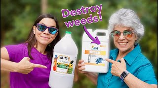 We Tried 30% Natural Vinegar to Kill Weeds / Part 1
