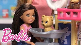 Chelsea Doll Learns About Being a Zoo Doctor | Barbie Careers | Barbie