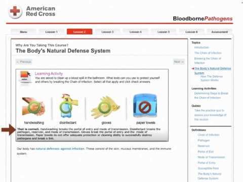 Online Bloodborne Pathogens Training - YouTube