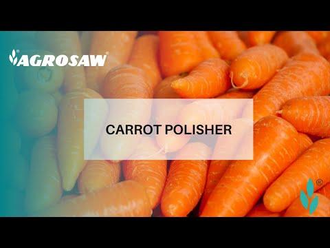 Carrot Polisher Line