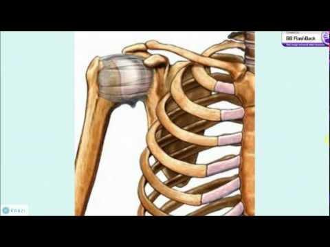Osteocondrosis de la columna cervical que peligroso