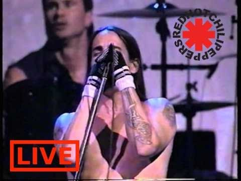 Red Hot Chili Peppers- Aeroplane Live HQ