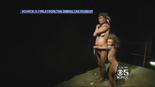 DNA Research Show Modern Humans Benefit From Neanderthal DNA