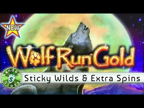 Wolf Run Gold at the D Casino by RandomSlots