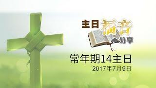 28主日福音分享-常年期14主日