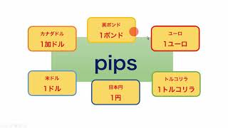 Pipsとは何か