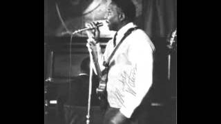 Muddy Waters- Don't Go No Further (Live)