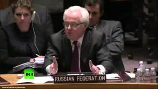 Чуркин: Уймите членов Совета Безопасности, они продолжают меня провоцировать
