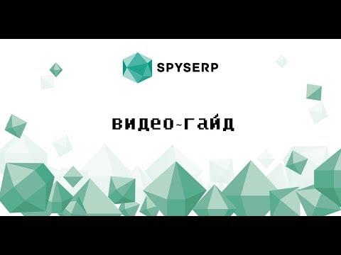 Видеообзор SpySerp