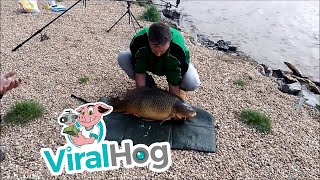 Carp Escapes From Fisherman || ViralHog
