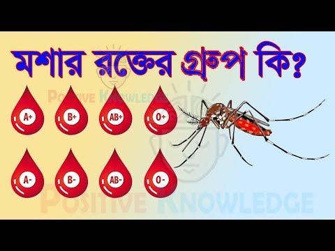 মশার রক্তের গ্রুপ কি ? Blood group of mosquitoes