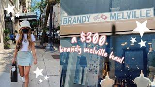 $300 brandy melville HAUL