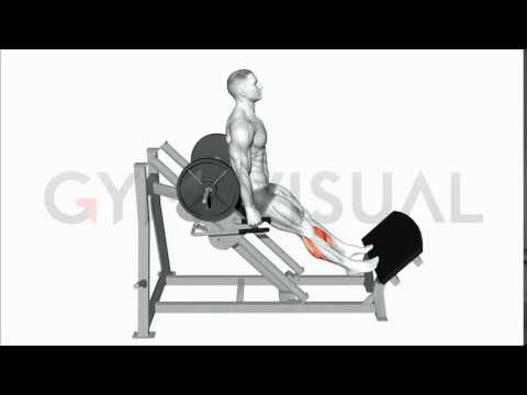 Sled 45 Degree Reverse Calf Raise (on hack press)