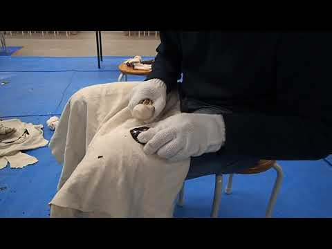 Liniezione prostatilen