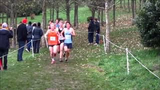 preview picture of video '2013 New Zealand Secondary Schools Cross Country Championships-Senior Boys Race'