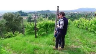 adami:la coltivazoine eroica