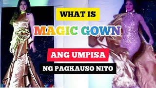 PURO MAGIC GOWNS  EVENING GOWN COMPETETION MISS GAY PASACOLA 20191