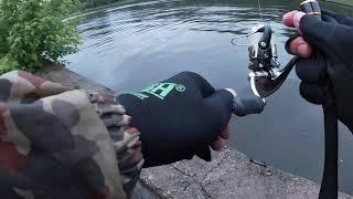 Отчеты о рыбалке rusfishing