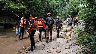 Тело 15-летней ирландской туристки нашли в лесу Малайзии