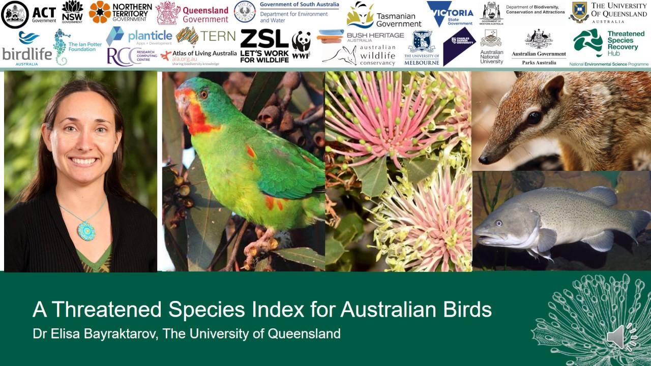 Presentation: 'A Threatened Species Index for Australian Birds' by Dr Elisa Bayraktarov, UQ