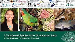 Presentation: 'A Threatened Species Index for Australian Birds' by Dr Elisa Bayraktarov, UQ