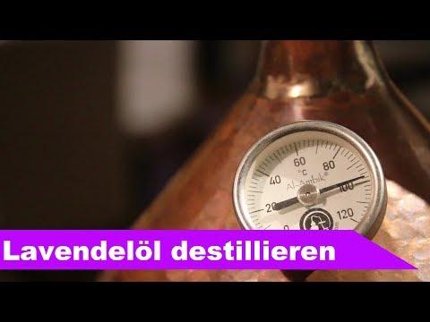 🌷 Ätherisches Lavendelöl destillieren 🌻 - diSTILLed