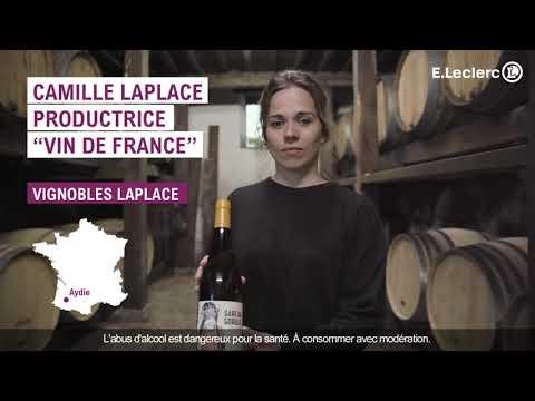 Musique publicité ELeclerc Foire aux vins 2021 – Vin de France – Gare aux gorilles    Juillet 2021