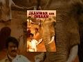 Jaanwar Aur Insan 2014 Hindi Dubbed Movies 2014 Full Movie Best Popular Hindi Movie