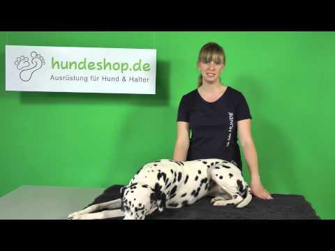 Vorstellung Vetbed Premium Hundedecke