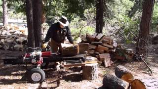 Log Splitter With Mechanical Lift