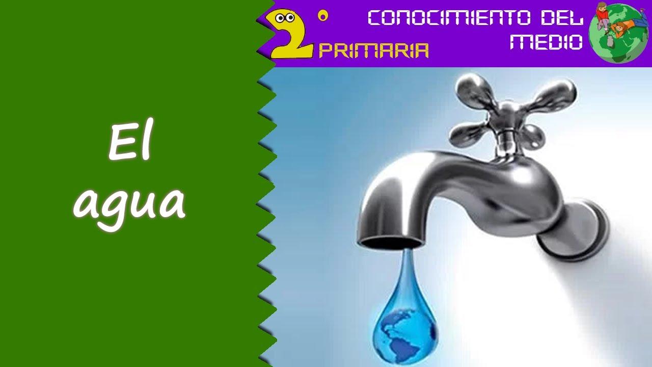Cono, 2º Primaria. Tema 7. El agua