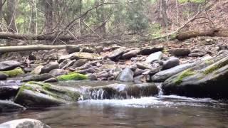 Mark Holder - Psalm 5