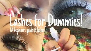 *LASHES FOR DUMMIES!* Beginners Tips & Tricks!
