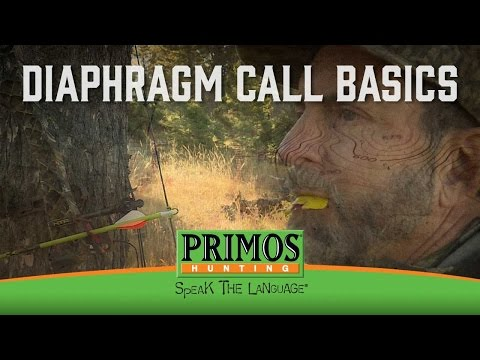How to Use a Diaphragm Elk Call video thumbnail