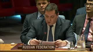 В.К.Сафронков на заседании Совета Безопасности ООН по ситуации в Йемене
