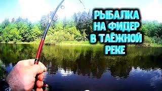Рыбалка на керженец