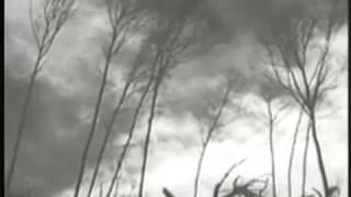 16 Horsepower - Splinters official edit (Lyrics)