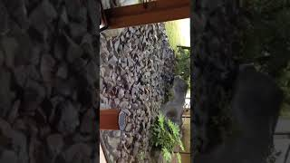 ホテルナガシマの喫煙室の雰囲気