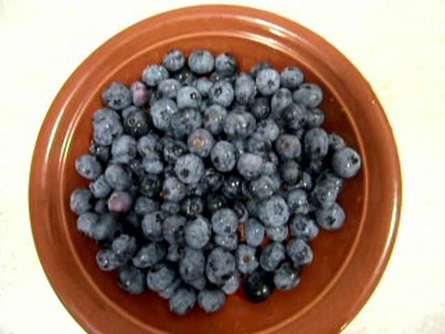 Голубика Блюкроп - королева ягод.