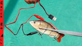 ROBOTIC FISHING LURE! **Does the Animated Lure really catch fish?**