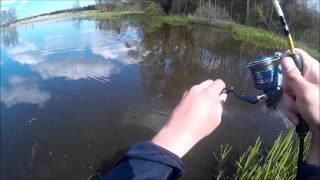 Отчет о рыбалке на калининградском заливе