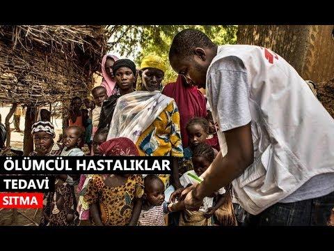 Ölümcül Hastalıklar: Sıtma (Tedavi)