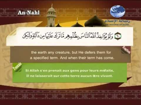 16- An-Nahl (Translation of the Meanings of The Noble Quran in the English Language)