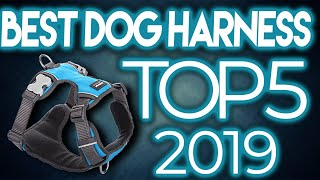 🙀 TOP 5: Best Dog Harnesses 2020