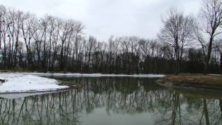 preview picture of video 'Alter Rhein_2010-03-14.MP4'